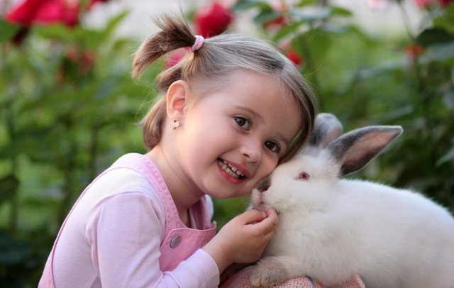 A young girl and the loss of her beloved pet rabbit